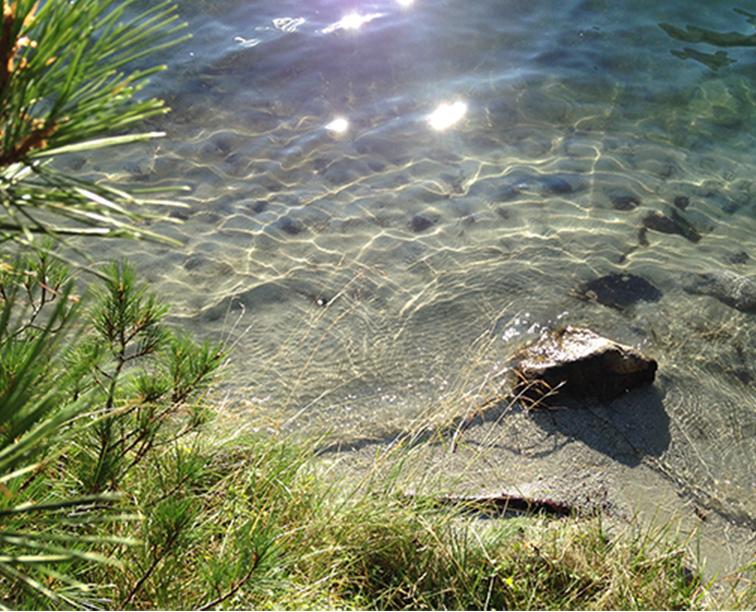 home-nature-lake
